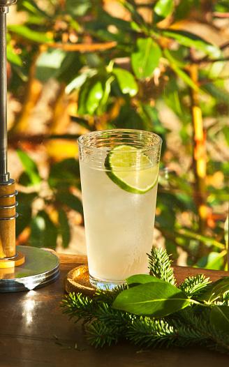 Votka Collins Kokteyl
